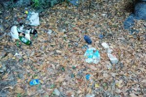 Viale geno - sentiero pedonale - rifiuti