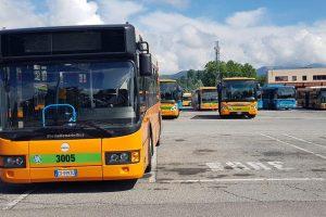 bus-asf (7)