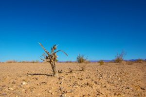 cambiamento-climatico-clima