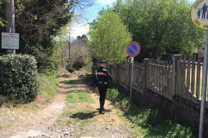 carabinieri bosco