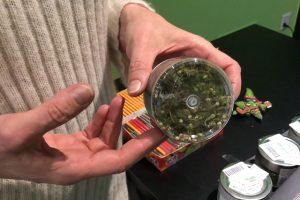 marijuanalegale-como-hemphouse (1)