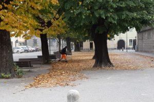 squadra-foglie-autunno-piazza-roma-1
