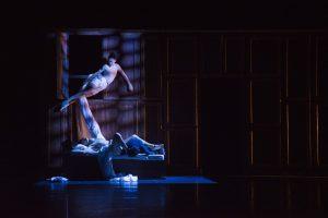teatro-sociale-Rossini-Ouvertures-ph-Fabio-Policastro
