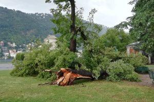 temporale-maltempo-albero-caduto-giardini-lago